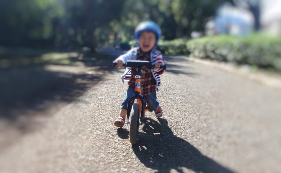 2歳笑顔で公園ストライダー