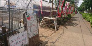 イチゴ農園入口