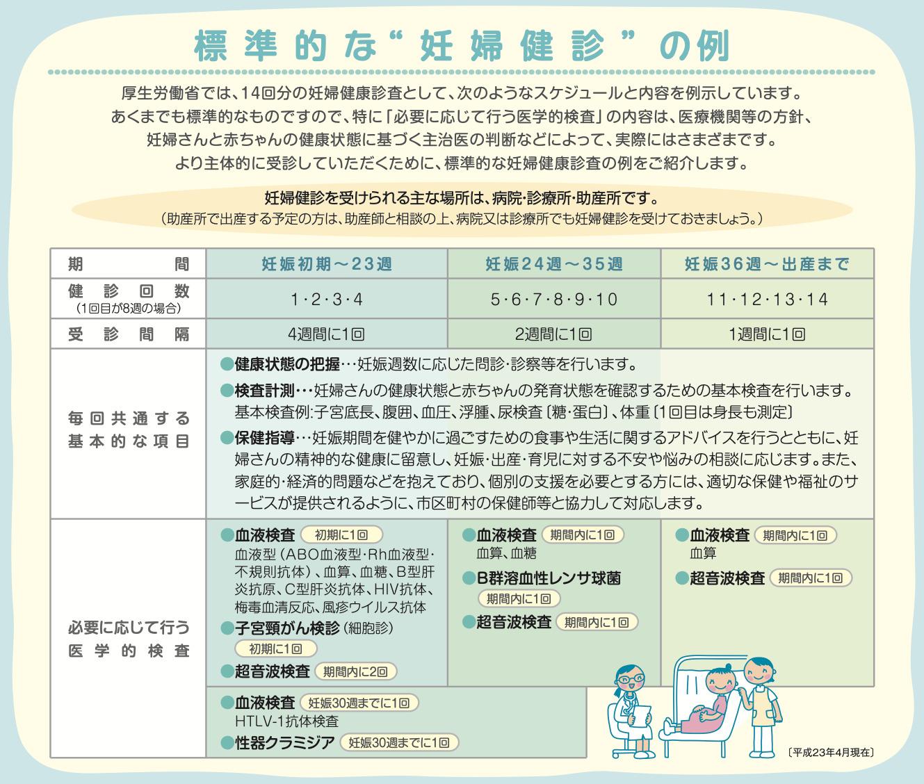 厚生労働省による2回目の妊婦検診で行う内容